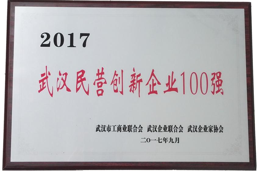2017武汉民营创新企业100强